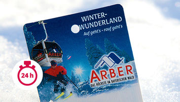 Tages-Ski-Ticket Junior